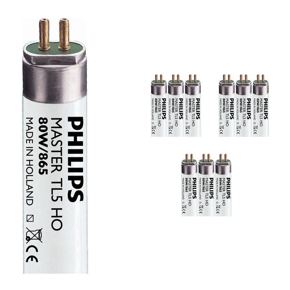Mehrfachpackung 10x Philips TL5 HO 80W 865 (MASTER) | 145cm - Tageslichtweiß