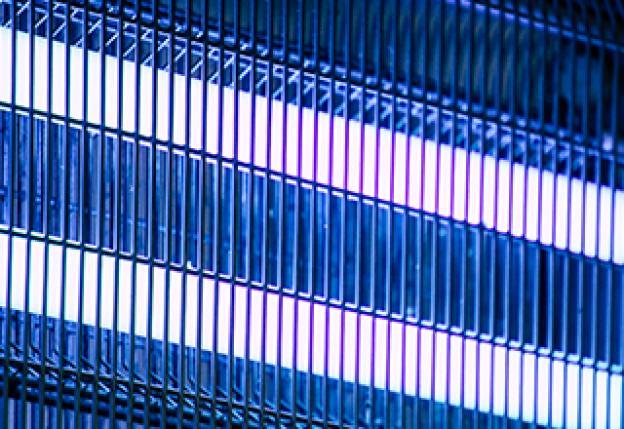 Insektenlampen: Hocheffektiver Schutz für den Sommer